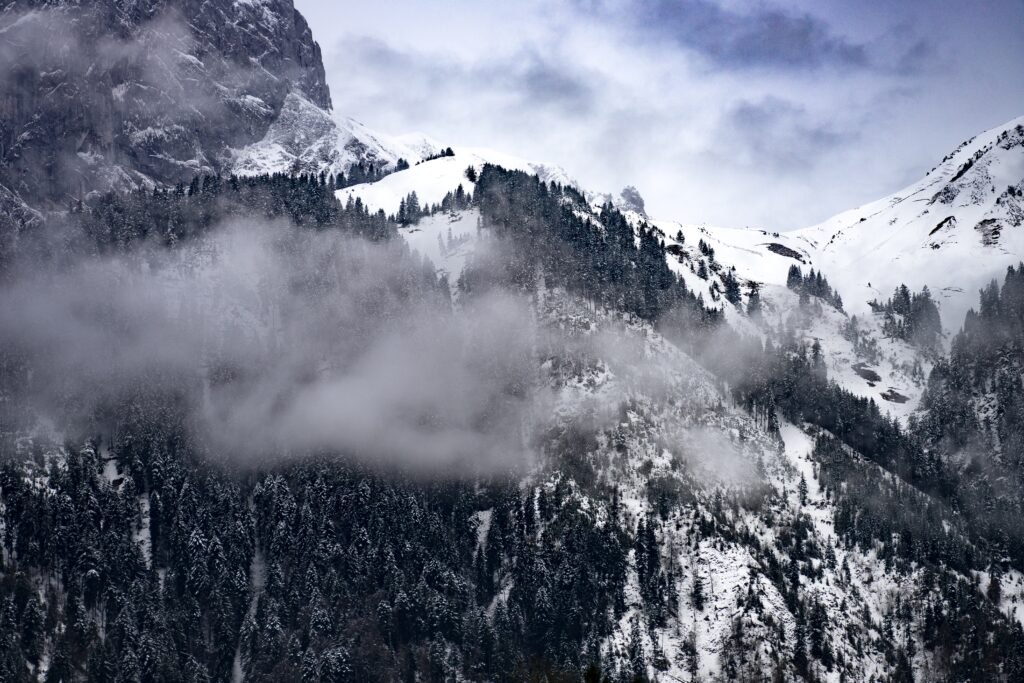 benefits of being in nature-winter scenery